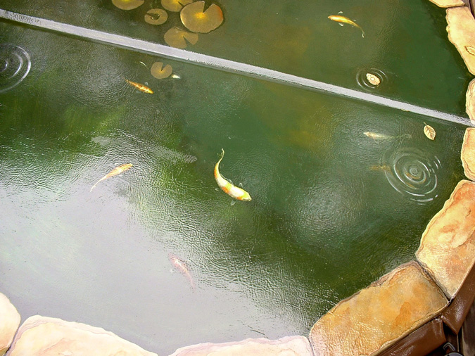 Koi Pond Hottub Cover